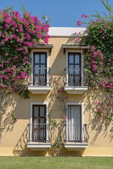 터키 보드룸(bodrum)의 벽에 주철 장식품과 꽃 나무가 있는 건물 정면에 발코니가 있는 창문