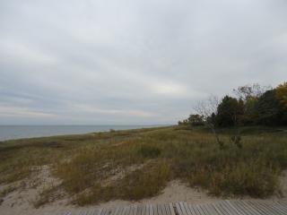 Windswept shore of lake michigan