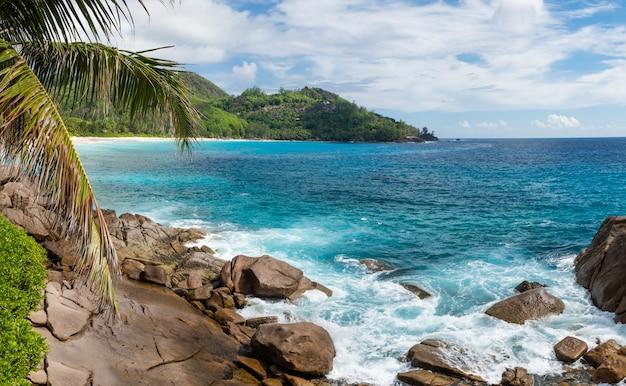 石と波の風の強い海岸。
