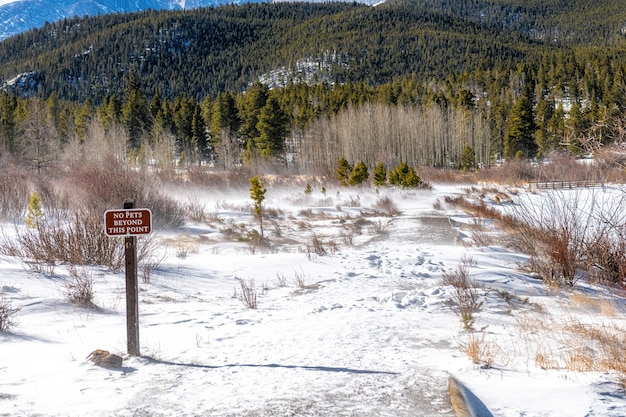 米国コロラド州ロッキー山脈国立公園で雪が降る風の強い冬の天候