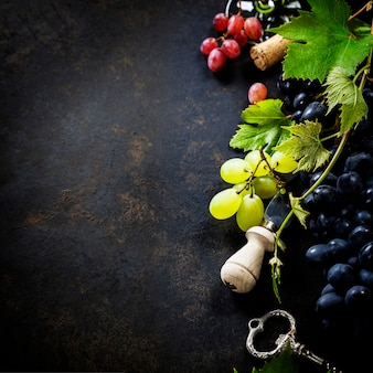 ワインとブドウ