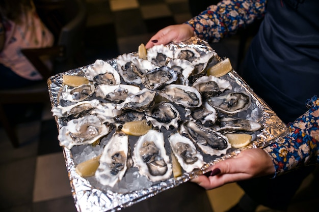 Wine dinner at restaurant with oysters and seafood
