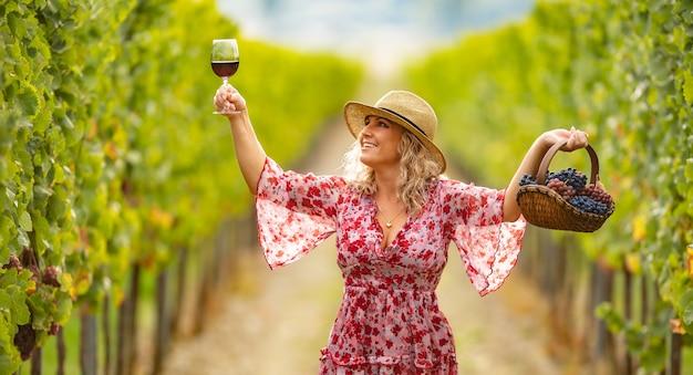 좋은 옷을 입은 포도주 양조업자는 성공적인 수확을 축하하고 좋은 품질의 수확량에서 맛있는 포도주를 보유합니다.