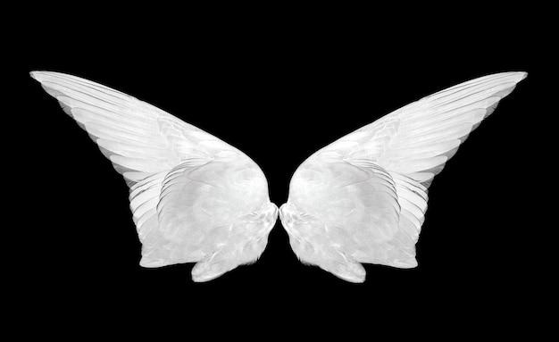Крылья, изолированные на черном фоне.