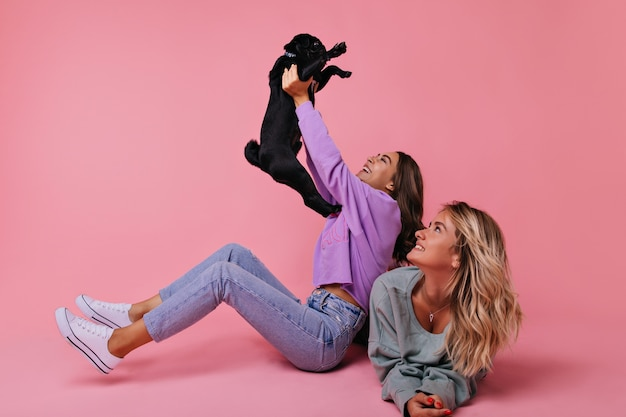 Winsome european girl holding black french bulldog. portrait of laughing ladies playing with puppy on pink.