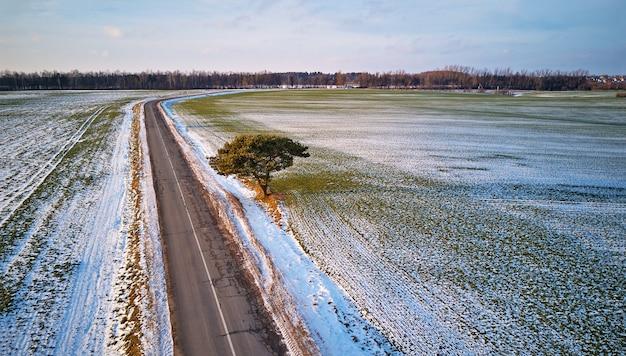 Winter agricultural field under snow. countryside road aerial view. lone pine tree near driveway. december rural landscape. minsk region, belarus