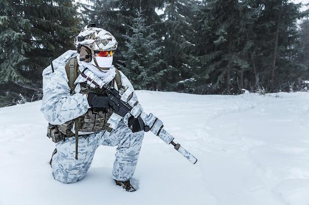 冬の北極戦争