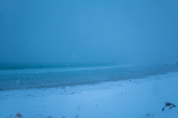 Winter beach. heavy snowfall hides the horizon. minimum visibility