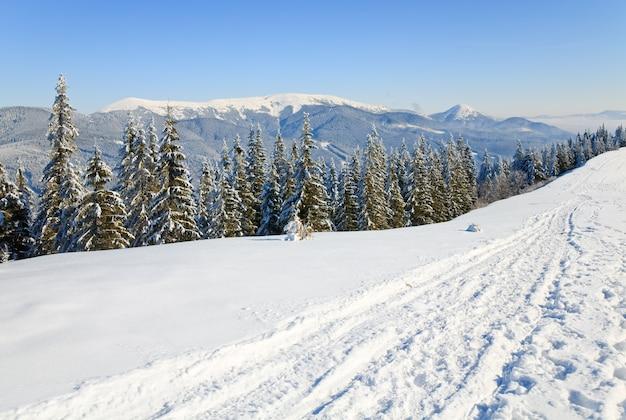 Зимний спокойный горный пейзаж (вид с горнолыжного курорта буковель (украина) на свидовецкий хребет)