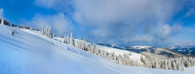 전나무 숲과 슬로프에 해명 그룹 겨울 진정 산 풍경