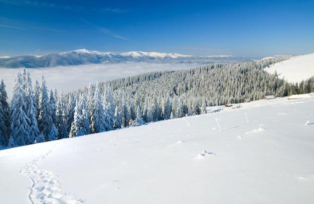 Зимний спокойный горный пейзаж со следом на переднем плане и группой навесов позади (вид с горнолыжного курорта буковель (украина) на свидовецкий хребет)