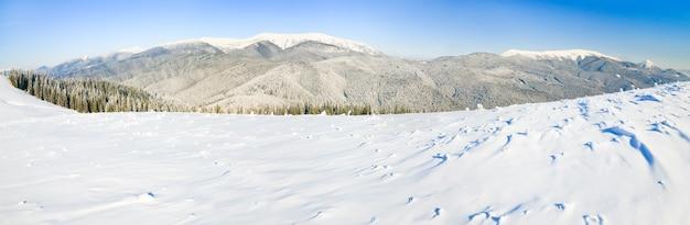 Зимний спокойный горный пейзаж с инеем и заснеженными елями. изображение сшивается тремя кадрами.