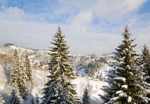 Зимний спокойный горный пейзаж с инеем и заснеженными елями