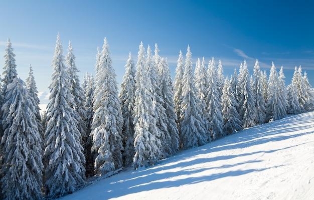 수빙과 눈 덮인 가문비나무가 있는 겨울의 고요한 산 풍경