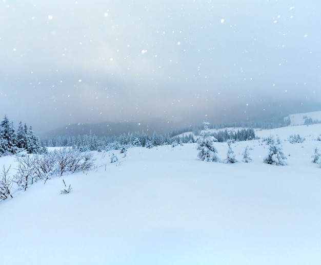 Зимний спокойный горный пейзаж со снегопадом