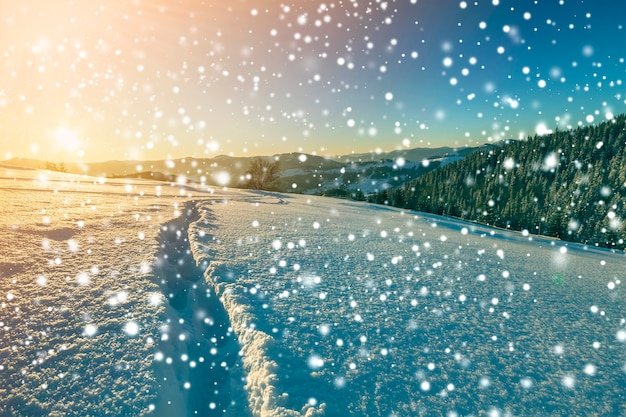 Winter christmas landscape at dawn. human footprint track path in crystal white deep snow through empty field, woody dark mountain range, large snowflakes on clear blue sky copy space background.