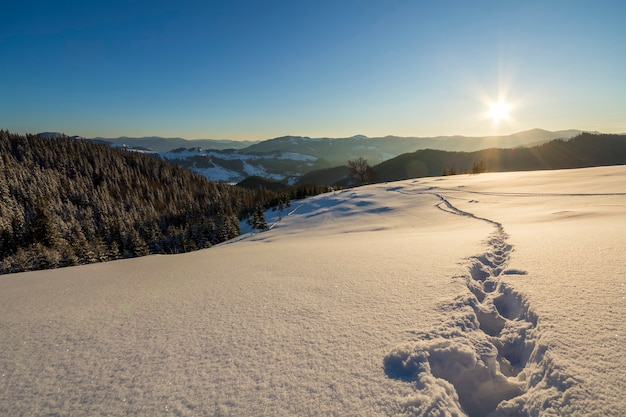 Winter christmas landscape. human footprint track path in crystal white deep snow through empty field, woody dark mountain range, soft glow on horizon on clear blue sky copy space background.
