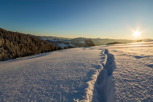 Winter christmas landscape. human footprint track path in crystal white deep snow through empty field, woody dark mountain range, soft glow on horizon on clear blue sky