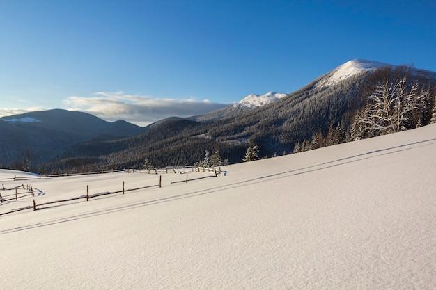 凍るような晴れた日の山の谷の冬のクリスマスの風景。深い雪の中の霜の高いモミの木、木質の暗い山の尾根、地平線の柔らかな輝き、青い空のコピースペースの背景で覆われています。