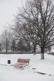 Winter city landscape. winter park covered with snow. a bench under a snow-covered tree in city park.