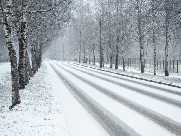 Winter country road in snowfall.