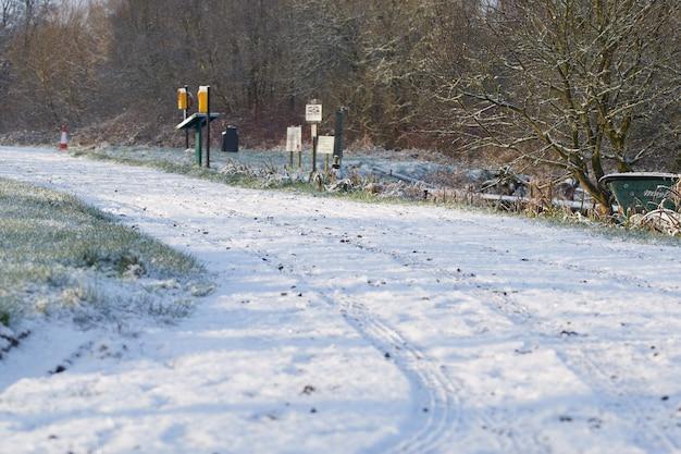 눈이 겨울 시골 길은 안개가 자욱한 아침 동안 거리로 이어지는 구과 맺는 나무를 덮었습니다.