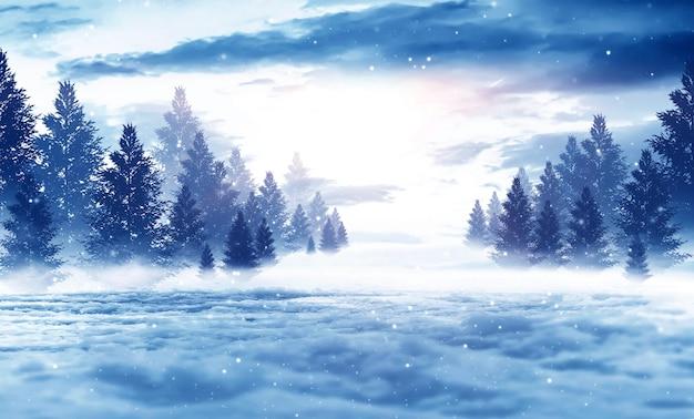 Зимний темный лес, снежный пейзаж с елями.
