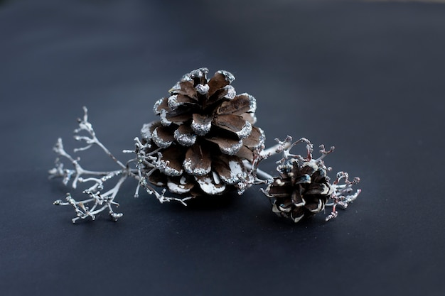 Winter decorations pine cones and twigs on a dark