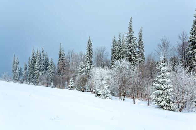 Зимний скучный спокойный горный пейзаж со снежными елями на холме