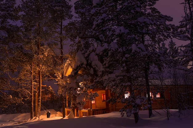 Winter evening and colored the sky. tall pines and lots of snow. lighted house in the background