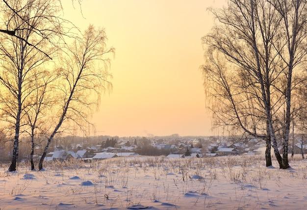 郊外の冬の夜。白樺の木立の雪の空き地、遠くの田舎の家の屋根