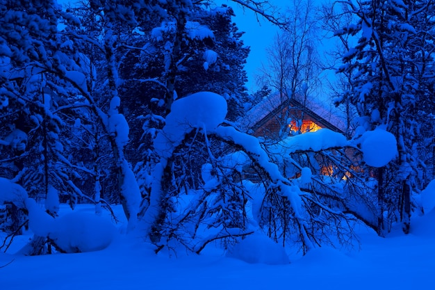 Winter evening in the woods. a lot of snow. lighted cottage in the background