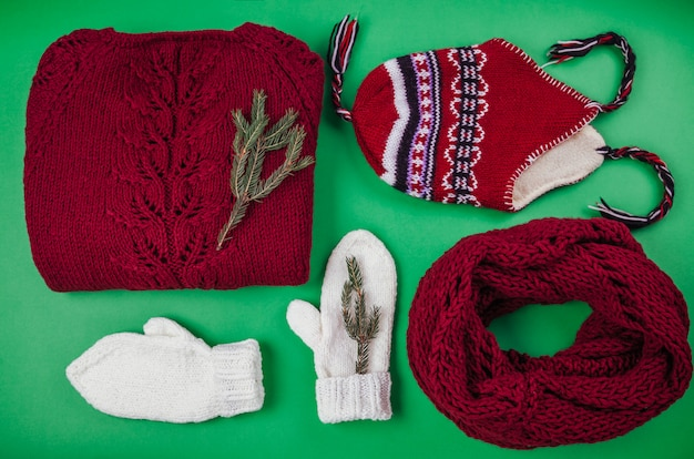 Winter female outfit. set of clothes and accessories