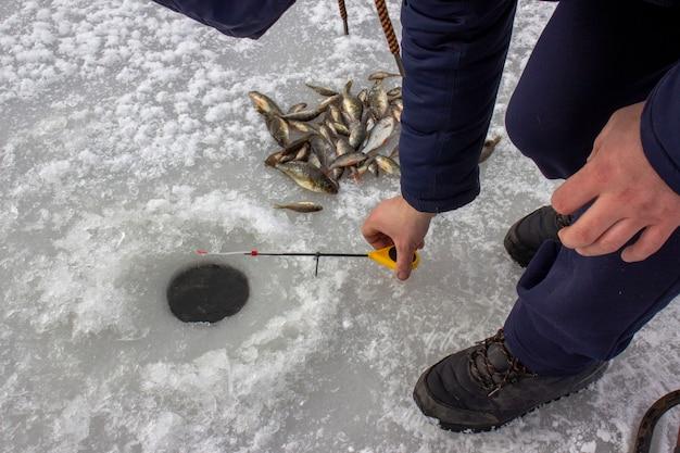 겨울낚시. 얼음에 물고기.