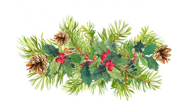 Winter flowers, fir tree, christmas mistletoe
