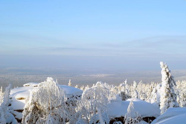 눈 덮인 바위가 전경에 있는 화창한 서리가 내린 날의 겨울 숲 풍경