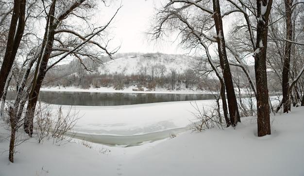 Зимний лес на берегу реки дон, на поверхности меловых гор. замерзающий пруд в россии.