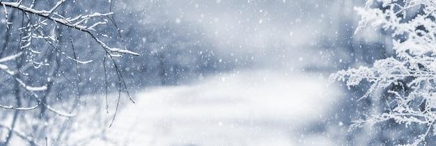 降雪時の雪道の近くに雪に覆われた木々や茂みの枝がある冬の森、冬のクリスマスの背景