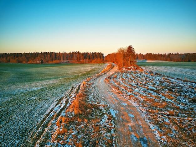 겨울 녹색 농업 분야 겨울 작물 눈 아래입니다. 다채로운 나무 12 월 일몰 공중 장면입니다. 시골 비포장 도로. 시골 최고 볼 수 있습니다. 벨로루시 민스크 지역