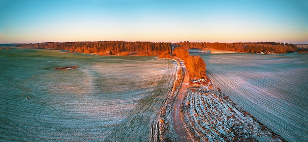 겨울 녹색 농업 분야 겨울 눈 파노라마 아래 작물입니다. 다채로운 나무 12 월 일몰 공중 장면입니다. 시골 비포장 도로. 시골 최고 볼 수 있습니다. 벨로루시 민스크 지역