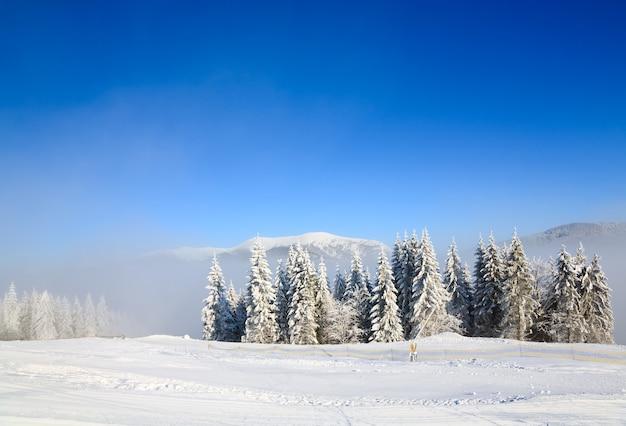 Зимний туманный спокойный горный пейзаж и горнолыжный курорт буковель, украина.