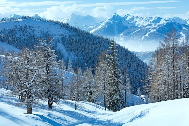 Зимний туманный вид с горного массива дахштайн (австрия).