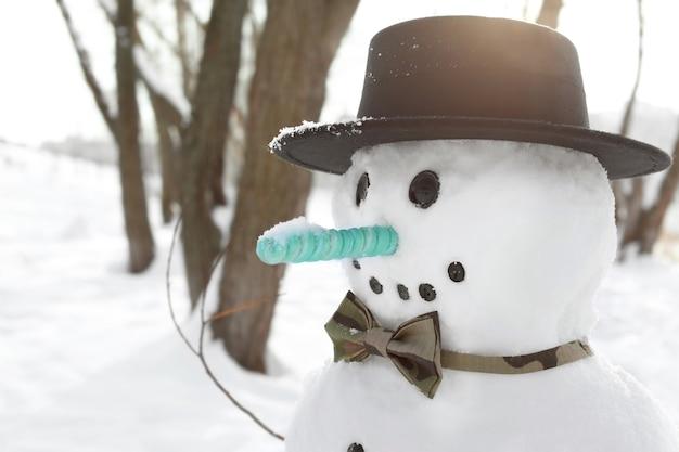 겨울 휴가 개념입니다. 겨울에 재미 있는 눈사람
