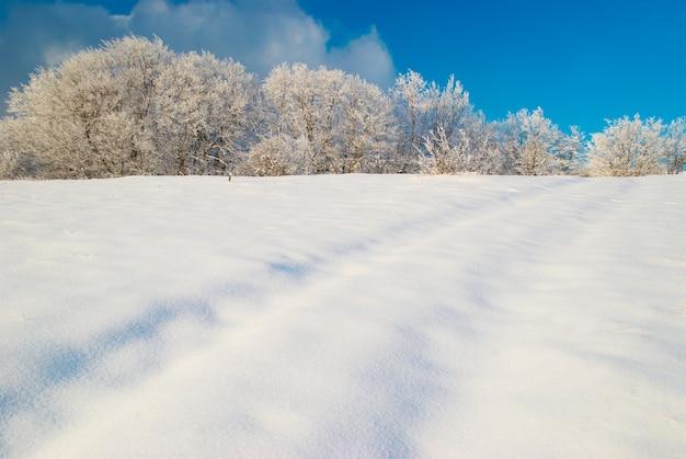 明るく輝く日と冬の氷の風景