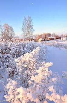 田舎の冬。厚い霜の中の木の枝、遠くの田舎の家