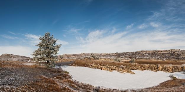 높은 산, 풍경의 겨울