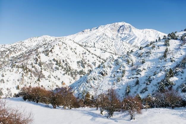 ウズベキスタンベルダーセイのスキーリゾートの冬