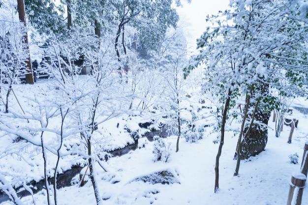 Winter in kyoto.