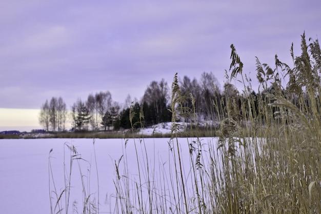 Winter lake at sunset