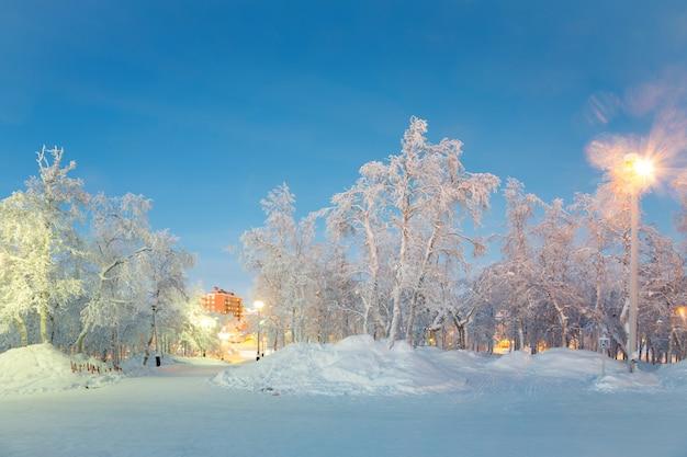 Winter landscape city garden